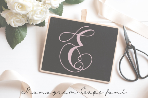Print on Demand: Monogram Swans Display Font By Rusd studio
