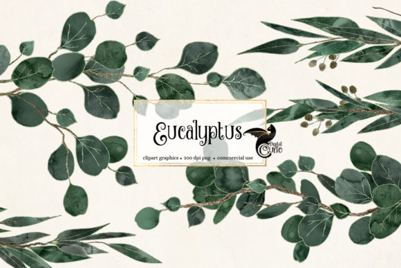 Print on Demand: Eucalyptus Clipart Graphic Illustrations By Digital Curio