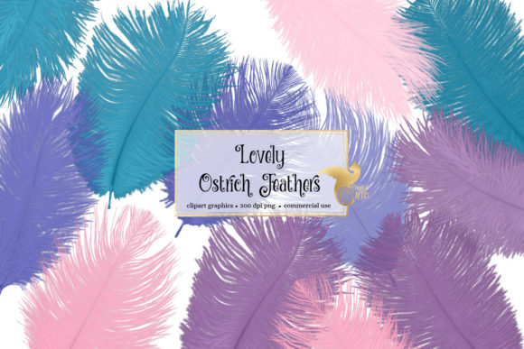 Print on Demand: Lovely Ostrich Feathers Clipart Graphic Objects By Digital Curio