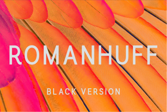 Print on Demand: Romanhuff Black Sans Serif Font By A Christie