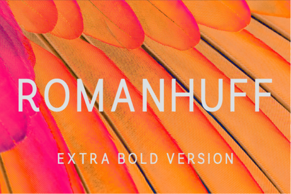 Print on Demand: Romanhuff Extra Bold Sans Serif Font By A Christie