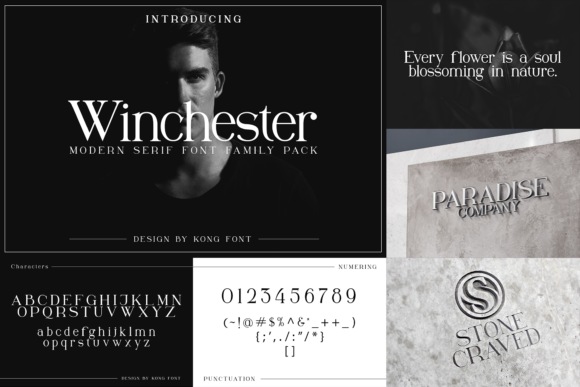 Print on Demand: Winchester Serif Font By fontkong - Image 7