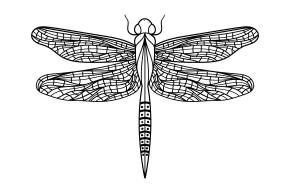 Dragonfly Line Art Style Animals Craft Cut File By Creative Fabrica Crafts