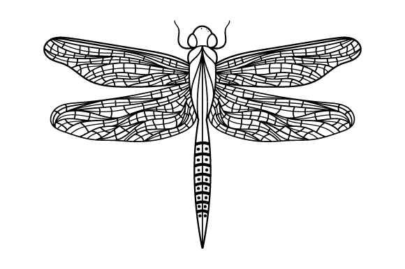 Download Free Dragonfly Line Art Style Svg Cut File By Creative Fabrica Crafts for Cricut Explore, Silhouette and other cutting machines.