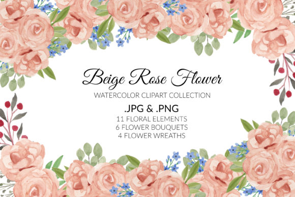 Beige Rose Flower Watercolor Clipart Set Graphic Illustrations By elsabenaa