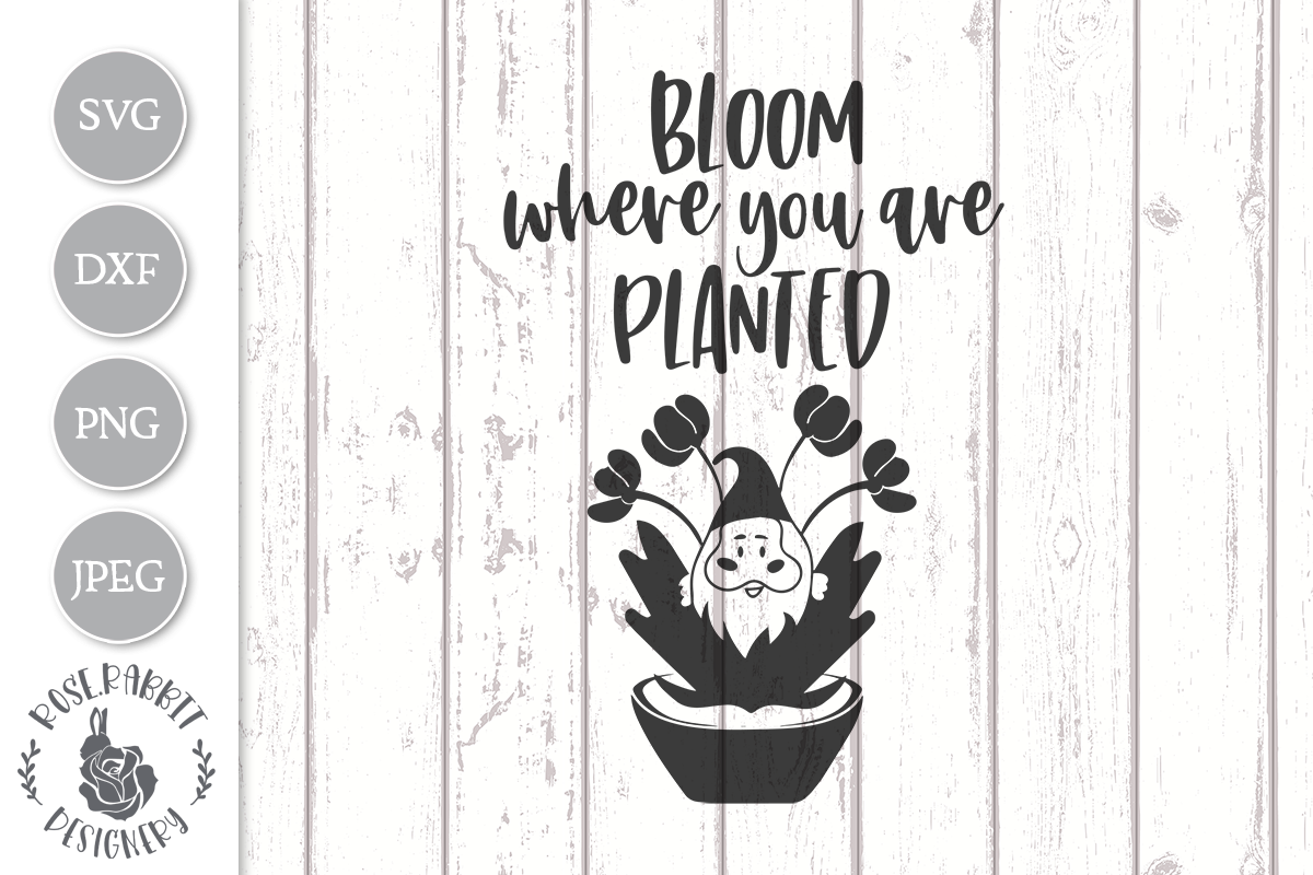 Bloom Where You Are Planted Graphic By Rose Rabbit Designery