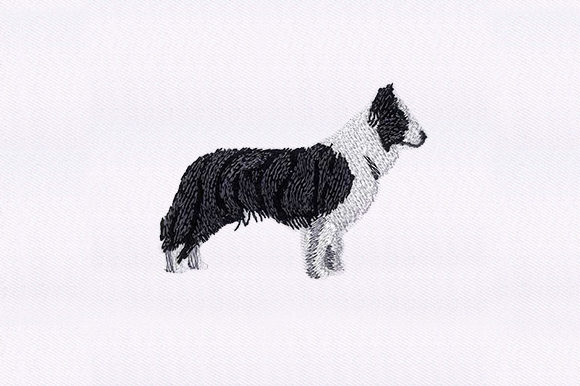 Border Collie Dogs Embroidery Design By DigitEMB