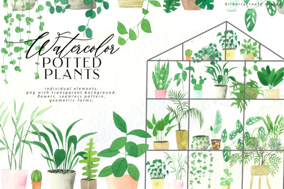Watercolor Cozy Potted Plants Graphic Illustrations By BilberryCreate
