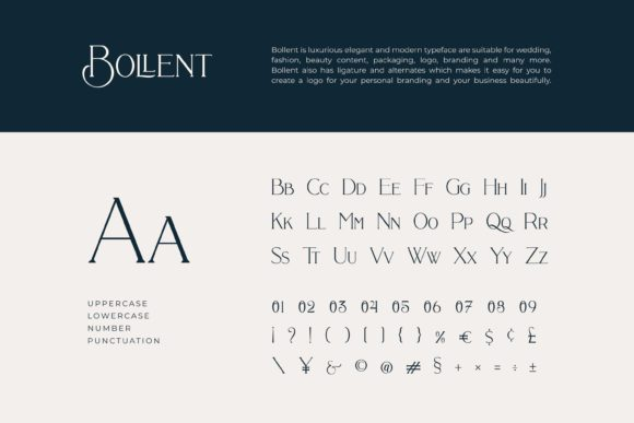 Print on Demand: Bollent Serif Font By Fype Co. - Image 8