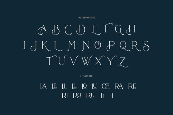Print on Demand: Bollent Serif Font By Fype Co. - Image 9