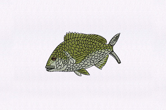 Green Fish Fish & Shells Embroidery Design By DigitEMB