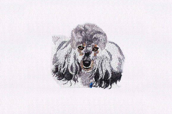 Poodle Face Dogs Embroidery Design By DigitEMB