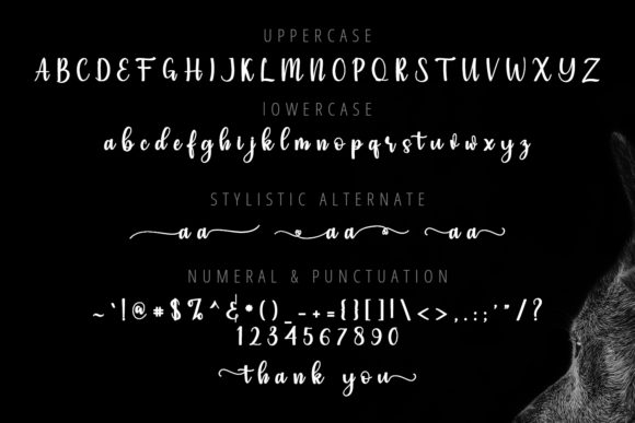 Simple Font Preview