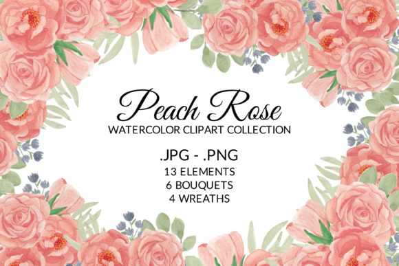 Print on Demand: Peach Rose Flower Watercolor Clipart Set Graphic Illustrations By elsabenaa