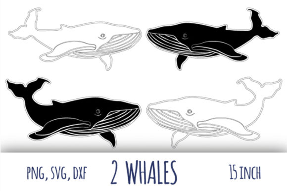 Download Free Whale Humpback Whale Clipart Graphic By Bunart Creative Fabrica for Cricut Explore, Silhouette and other cutting machines.