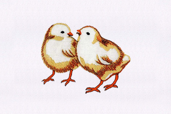 Chicks Chicken Birds Embroidery Design By DigitEMB
