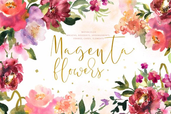 Magenta Flowers Graphic Illustrations By Iuliia Zubkova