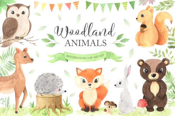 Watercolor Woodland Animals Set Graphic Illustrations By Larysa Zabrotskaya