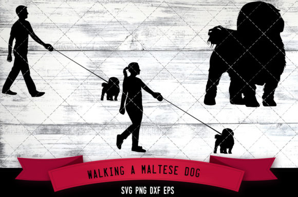 Download Free Walking A Maltese Dog Silhouette Vector Graphic By for Cricut Explore, Silhouette and other cutting machines.