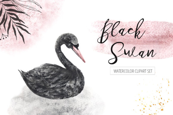 Download Free Watercolor Black Swan Set Graphic By Larysa Zabrotskaya for Cricut Explore, Silhouette and other cutting machines.