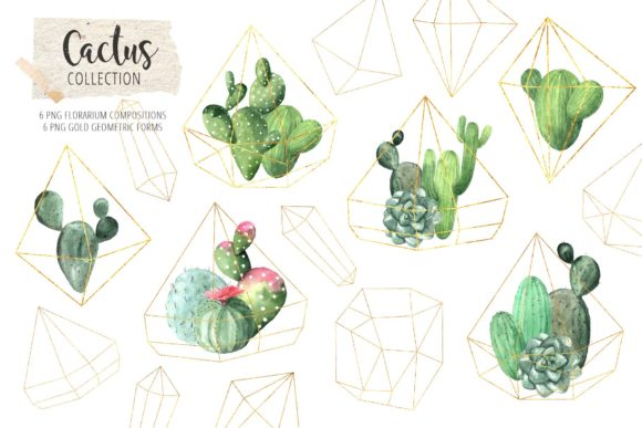 Download Free Watercolor Exotic Cactus Collection Graphic By Larysa for Cricut Explore, Silhouette and other cutting machines.
