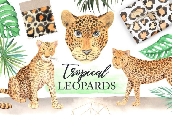 Watercolor Leopards in the Jungle Graphic Illustrations By Larysa Zabrotskaya