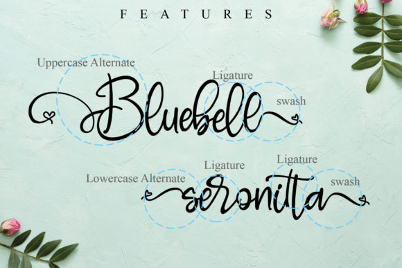 Print on Demand: Bluebell Script & Handwritten Font By thomasaradea - Image 10
