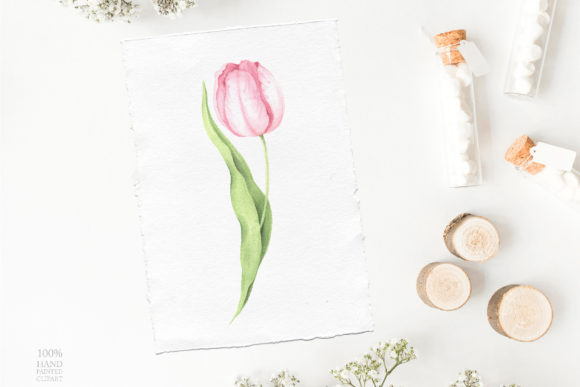 Watercolor Spring Floral Collection Graphic Illustrations By Larysa Zabrotskaya - Image 13