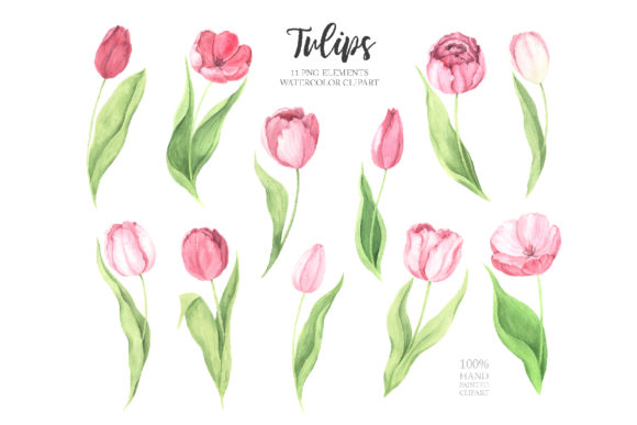 Watercolor Spring Floral Collection Graphic Illustrations By Larysa Zabrotskaya - Image 4