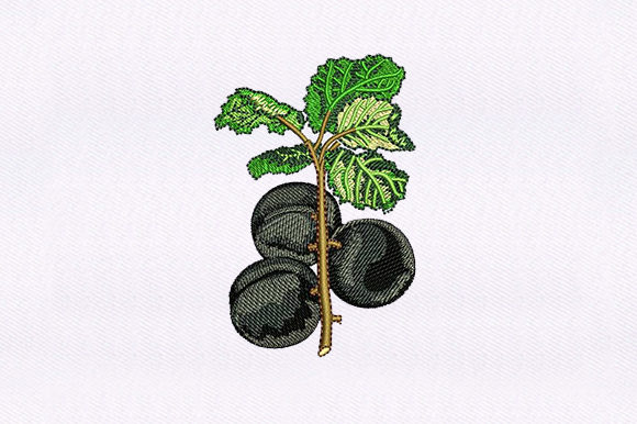 Black Cherry Vines Food & Dining Embroidery Design By DigitEMB