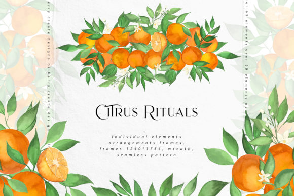 Citrus Rituals Graphic Illustrations By BilberryCreate