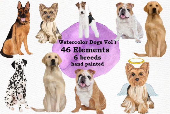 Dogs Clipart Dog Breeds Pet Clipart Gráfico Ilustraciones Por LeCoqDesign