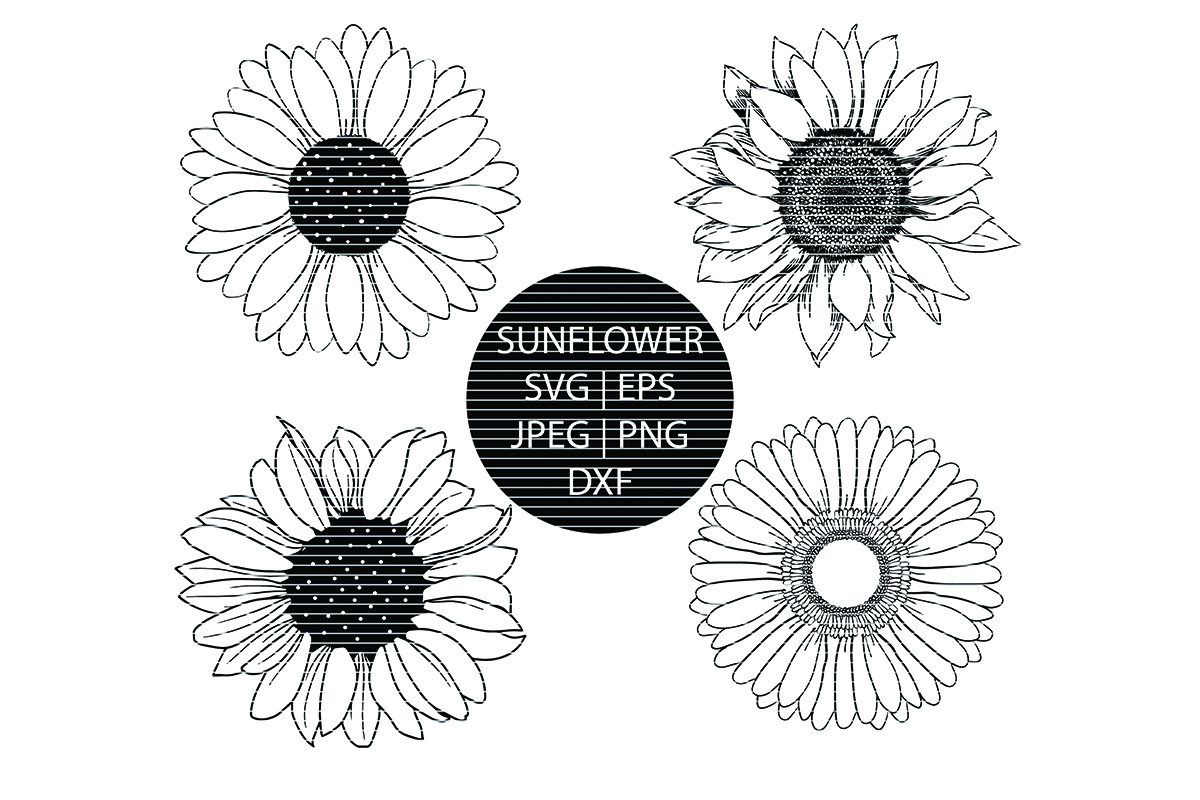 Download Free Hand Drawn Sunflower Clip Art Bundle Graphic By Meshaarts for Cricut Explore, Silhouette and other cutting machines.