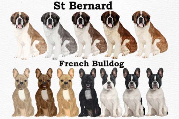 Dog Clipart Dog Breeds Pet Clipart Graphic Illustrations By LeCoqDesign - Image 4