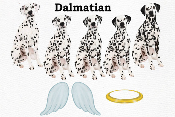 Dogs Clipart Dog Breeds Pet Clipart Graphic Illustrations By LeCoqDesign - Image 5