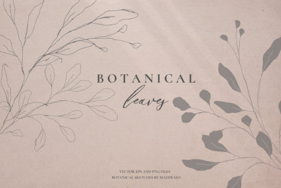 Botanical Leaves - Sketched Florals Graphic Illustrations By Madiwaso