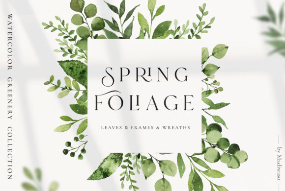 Spring Foliage Greenery Leaves Graphic Illustrations By Madiwaso