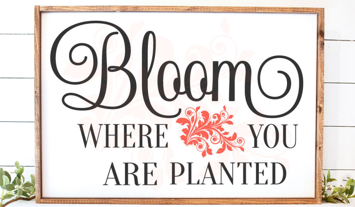 Download Free Bloom Where You Are Planted Garden Graphic By Farmstone Studio for Cricut Explore, Silhouette and other cutting machines.