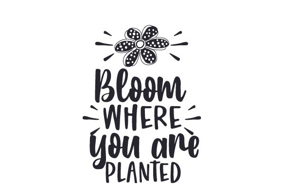 Bloom Where You Are Planted Nature & Outdoors Craft Cut File By Creative Fabrica Crafts - Image 1