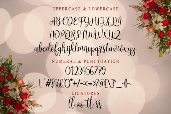 Print on Demand: Angelic Script & Handwritten Font By Doehantz Studio - Image 9
