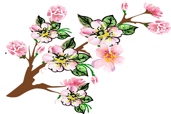 Print on Demand: Apple Blossom Graphic Illustrations By arts4busykids