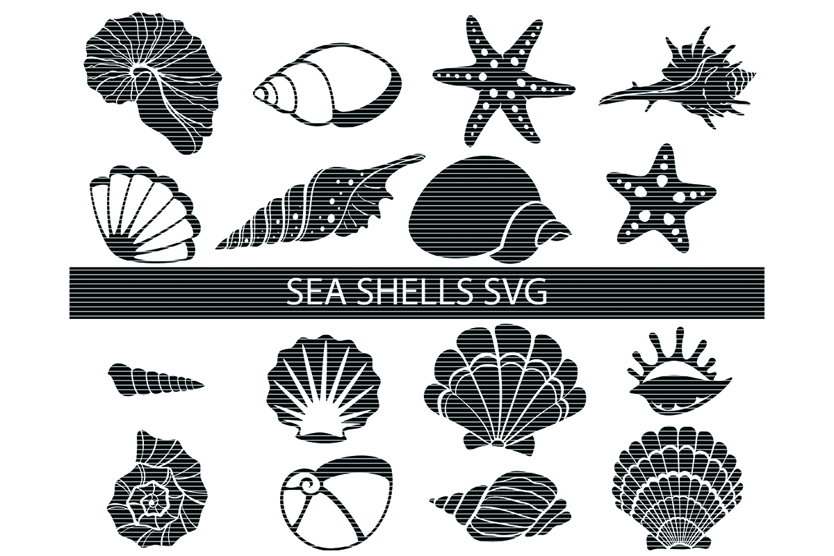 Download Free Sea Shell Clip Art Bundle Graphic By Meshaarts Creative Fabrica for Cricut Explore, Silhouette and other cutting machines.