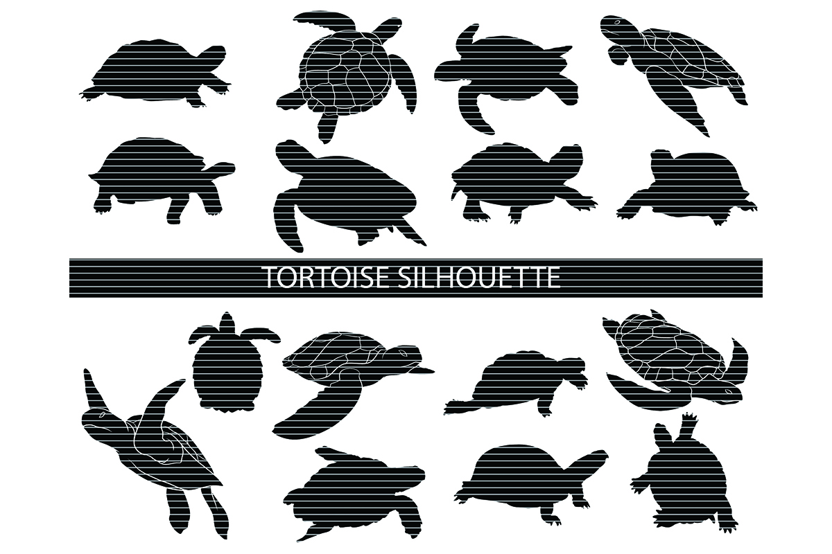 Download Free Turtle Silhouette Bundle Graphic By Meshaarts Creative Fabrica for Cricut Explore, Silhouette and other cutting machines.