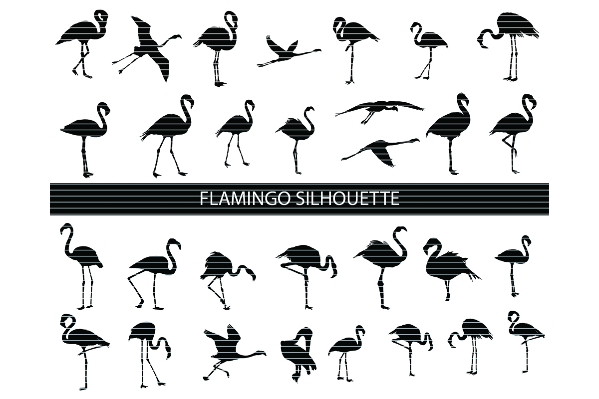 Flamingo Silhouette Clip Art Bundle Graphic By Meshaarts
