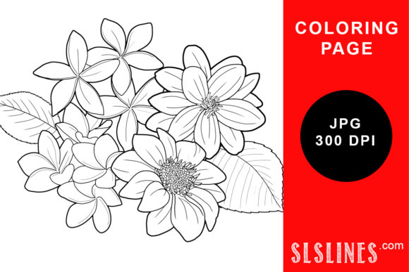 Print on Demand: Beautiful Dahlias Coloring Page Graphic Coloring Pages & Books Adults By SLS Lines