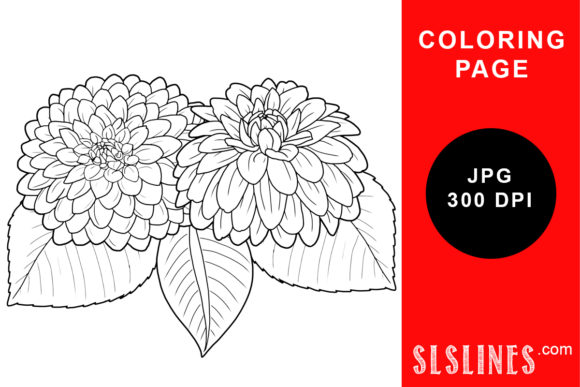 Print on Demand: Bushy Dahlia Flowers Coloring Page Graphic Coloring Pages & Books Adults By SLS Lines