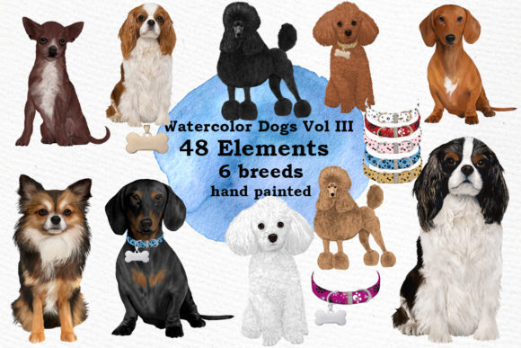 Dog Breeds Clipart Graphic