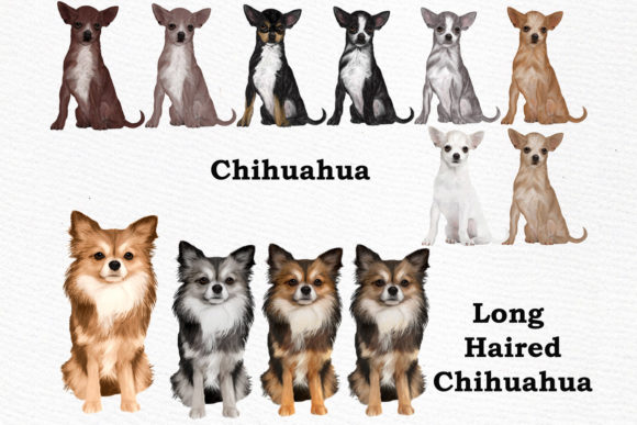 Dog Breeds Clipart Graphic Download
