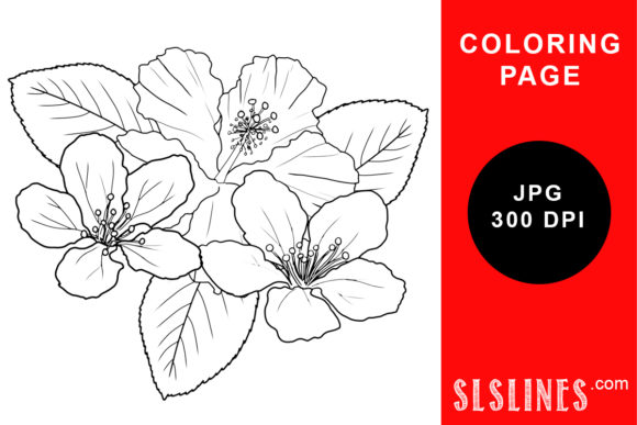 Print on Demand: Spring Flower Blossoms Coloring Page Graphic Coloring Pages & Books Adults By SLS Lines