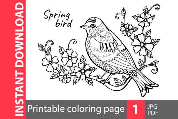 Spring Bird Coloring Page Graphic Coloring Pages & Books Adults By NataliMyaStore